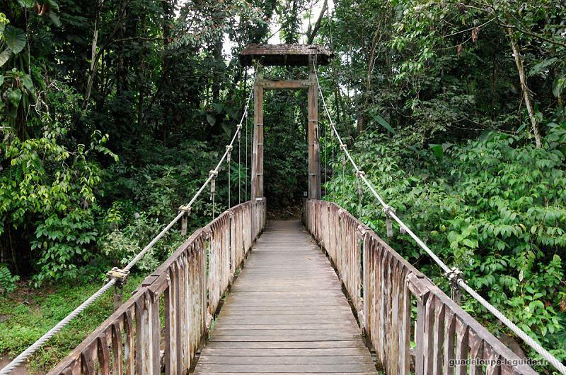 Le Parc national de la Guadeloupe - Maison de la forêt